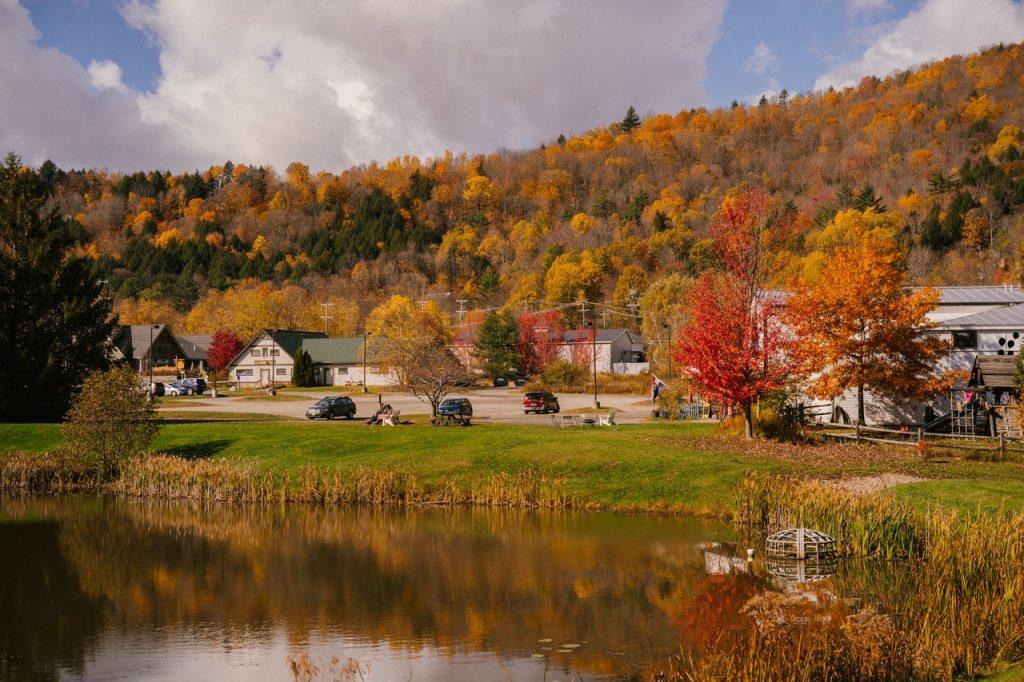 a neighborhood by a lake